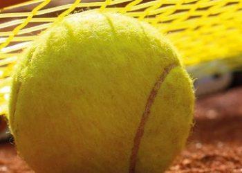 делать лайве теннис ставки в как на